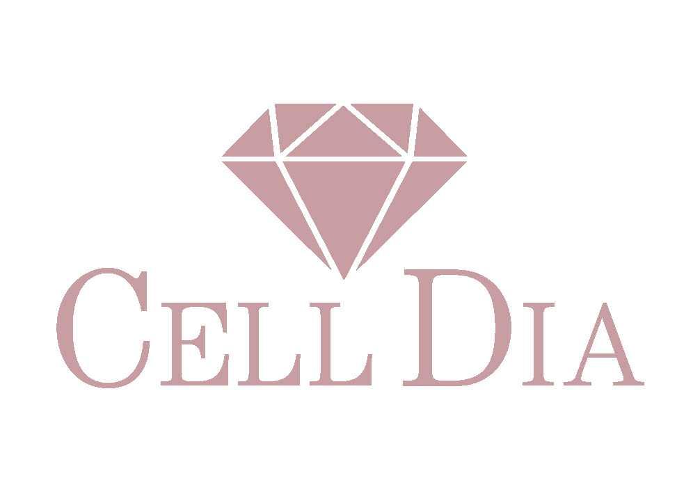 celldiaホームページ更新